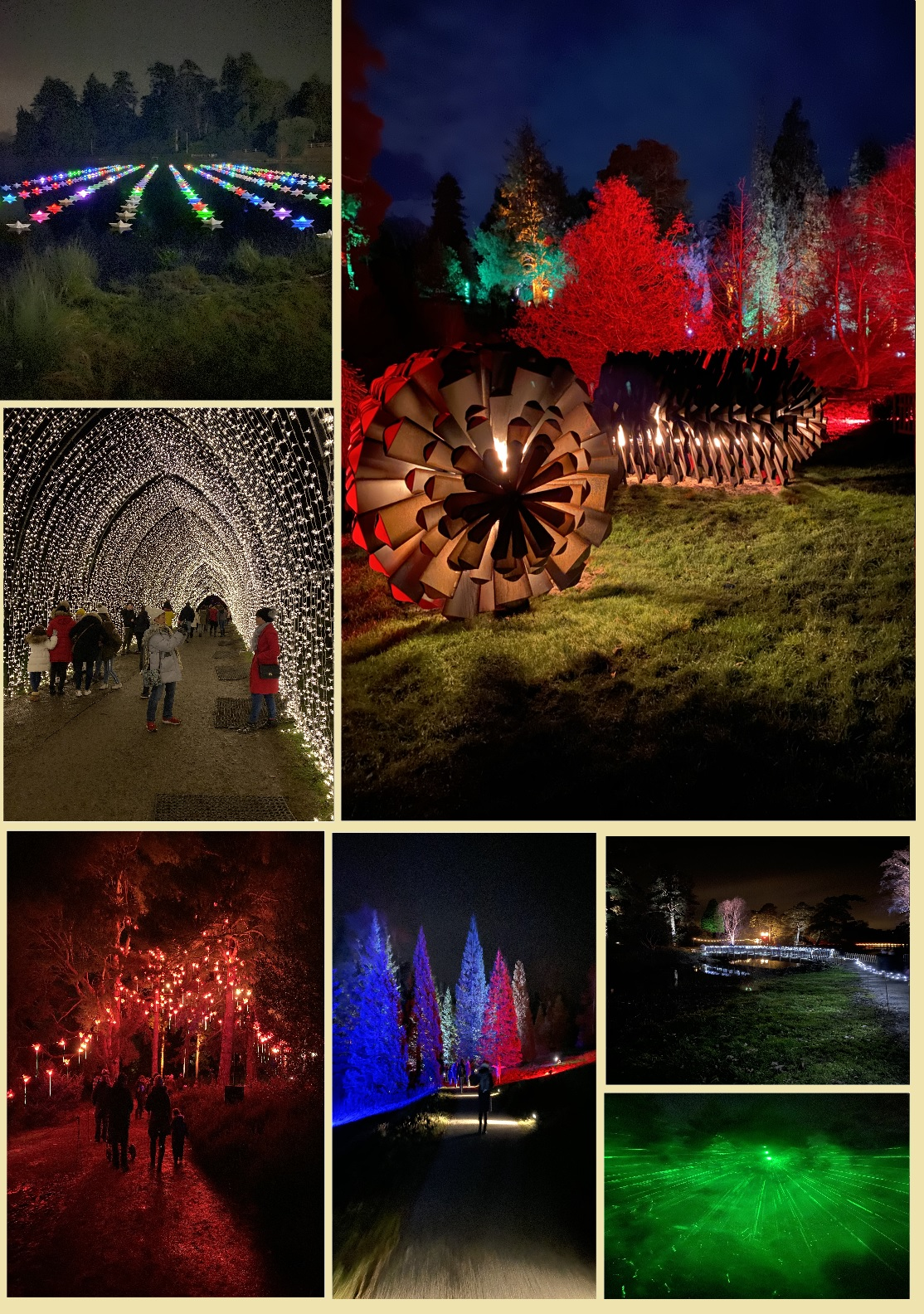 BEDGEBURY PINETUM & FOREST... A VERY MAGICAL TIME OF THE YEAR